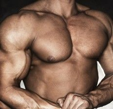 Muscle man, body building