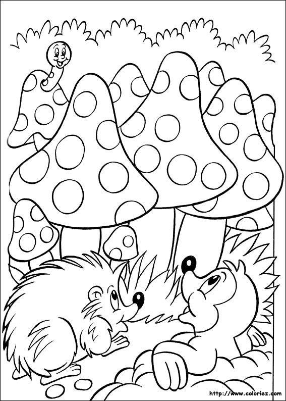 Coloriage champignons et hérisson