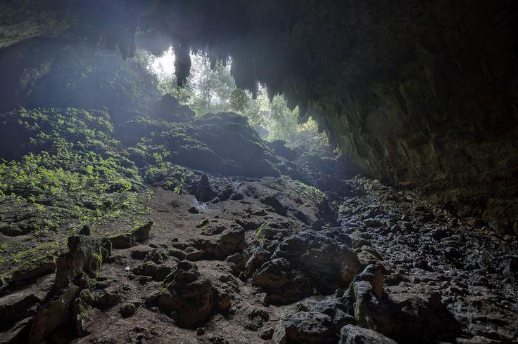 Las Cuevas Del Rio Camuy Parque Nacional Cavernas del Rio Camuy Puerto Rico [OC] [6141 x 4093] #reddit