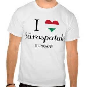 sarospatak hungary - Bing Images