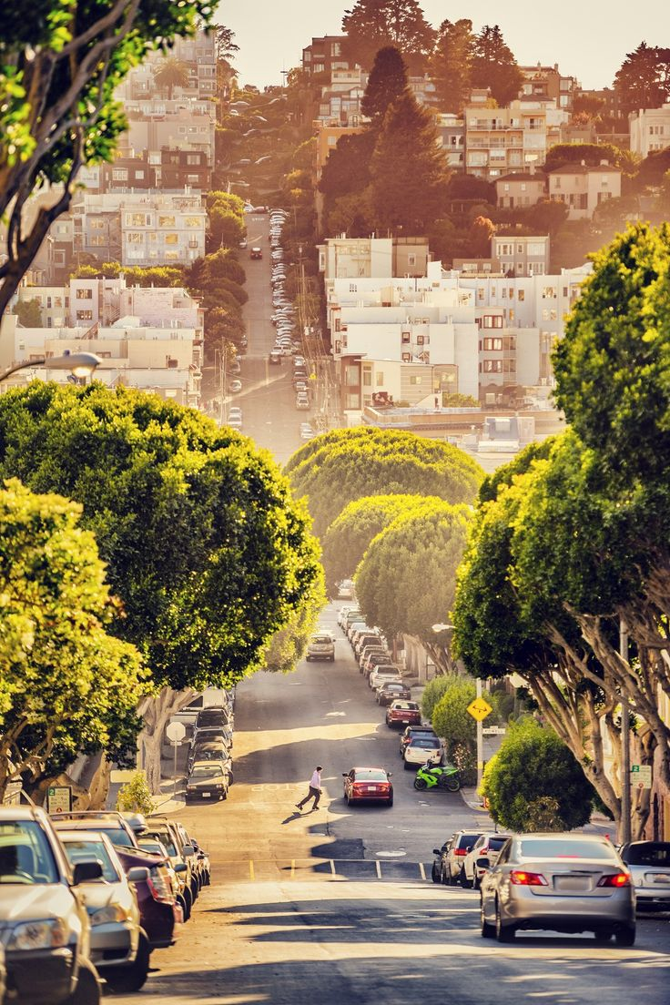 162 Best Images About San Francisco Bay Area Things To Do