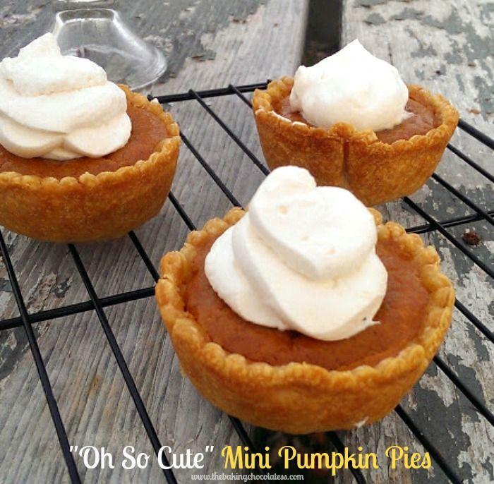 1000+ ideas about Mini Pumpkin Pies on Pinterest | Pumpkin ...