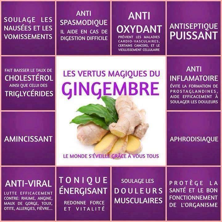 Les bienfaits du gingembre