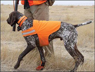 Hunting Dog Vests https://www.uglydoghunting.com/dogvests.php