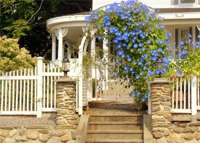 morning glory archway with rock wall.  Beautiful porch entrance.