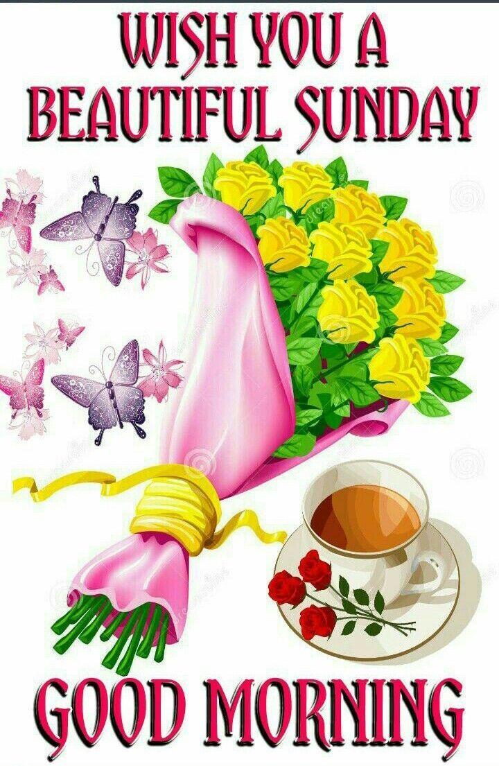 Wünsche Einen Schönen Sonntag Für Mein Schatz   Good morning ...