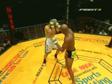 31 Badass MMA Knockout GIFs | Total Pro Sports