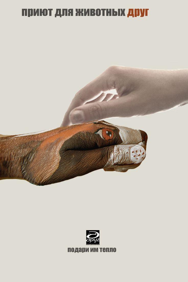"""социальный плакат """"Помоги бездомным животным"""" social placard """"Help homeless animals"""""""