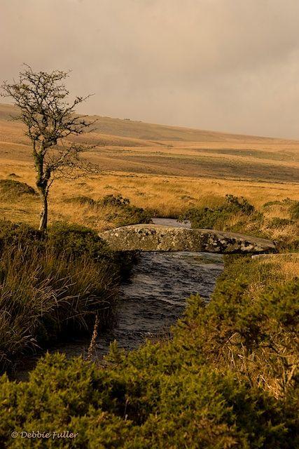 Dartmoor National Park, Devon, UK.