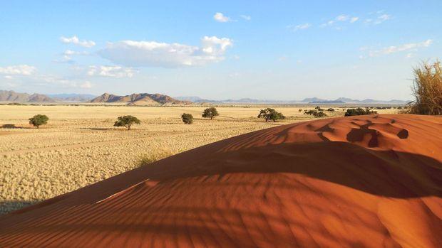 Routard.com : toutes les informations pour préparer votre voyage Namibie. Carte Namibie, formalité, météo, activités, itinéraire, photos Namibie, hôtel Namibie, séjour, actualité, tourisme, vidéos Namibie