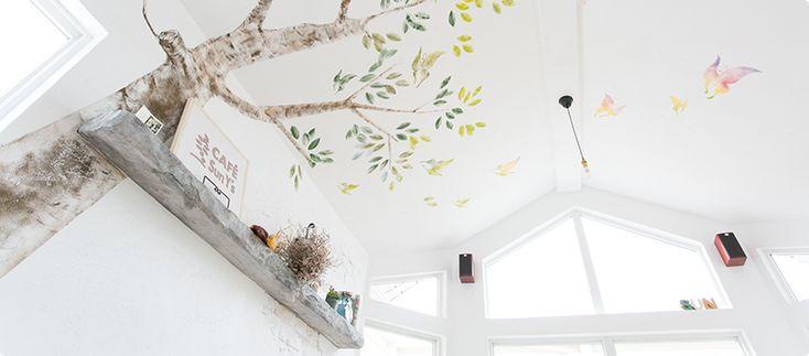 漆喰塗り壁ワークショップ  カルクウォール販売 スイス漆喰の塗り壁リフォーム   ナチュラワイズ