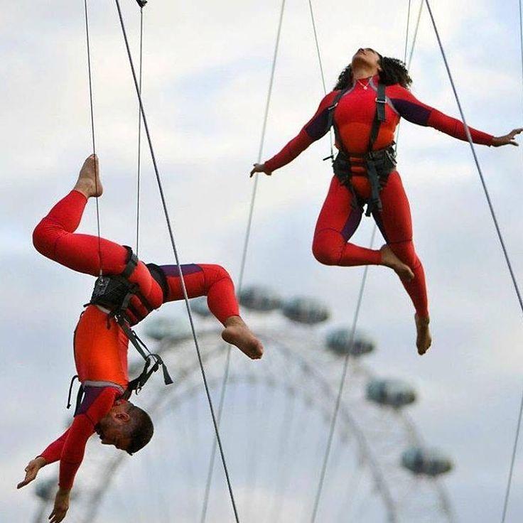 #Televisietip!  De choreografieën van Elizabeth Streb zijn unieke kunstvormen: een mengeling van moderne dans, circus, rodeo en stunts. In alle voorstellingen nemen haar dansers flinke risico's, waarbij het publiek vaak met het zweet in de handen zit te kijken. Vanavond zenden we in ons programma Close Up om 19:15 uur op NPO 2 de documentaire 'Born to fly' uit.  #elizabethstreb #borntofly #dance #acrobatics #daredevil #extreme #choreographer #documentary #radical #strebextremeactioncompany