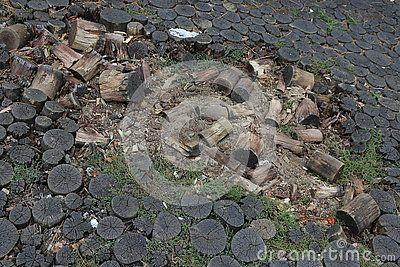 Broken pavement from tree trunks - details destruction.