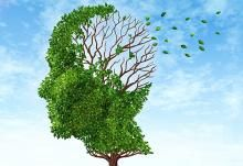 Alzheimer's Disease Prevention  -Currently, there's no proven way for alzheimer & disease prevention. However, keeping the patient active physically, mentally & socially can slow down the progress of Alzheimer.