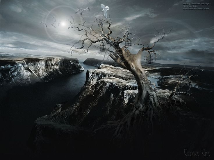 the light 3D wallpaper. Dark mystical nature, spiritual ...