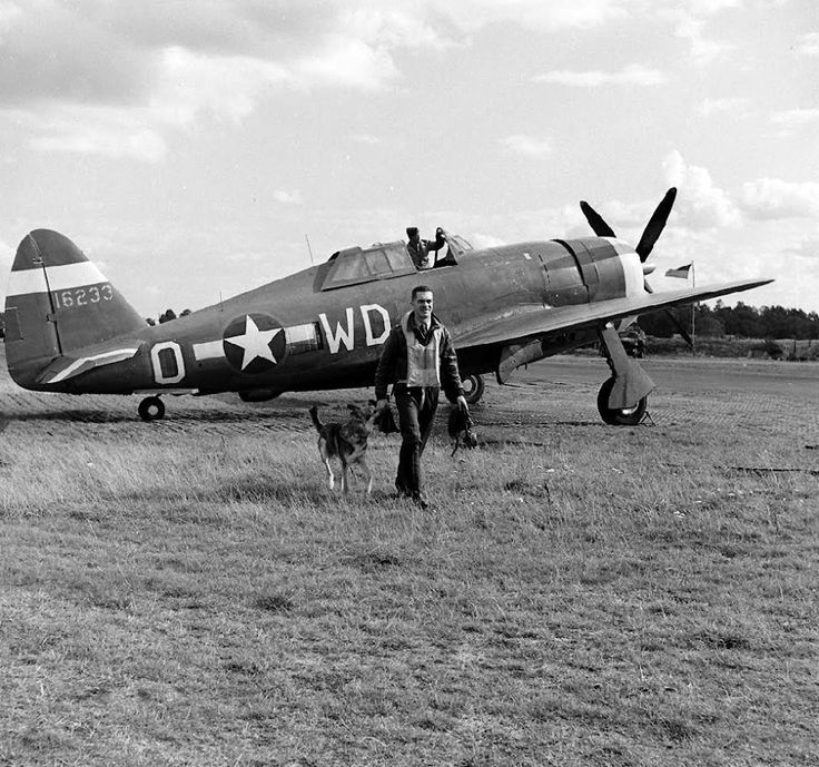 """Lieutenant Howard Hively of the 335th Fighter Squadron, 4th Fighter Group with his dog mascot """"Duke"""" and a P-47 Thunderbolt at Debden, 1 October 1943. Passed for publication 1 Oct 1943. Handwritten caption on reverse: '1/10/43. Lt. Howard Hively, [aged] 28, 4TFO.' 'Printed caption on reverse: MASCOT WELCOMES THUNDERBOLT PILOT Associated Press Photo show: """"Duke"""" Police dog mascot of a P-47 Thunderbolt Squadron in England, playfully tugs at a glove of Lt. Howard D. (Deacon) Hively, 28, of…"""