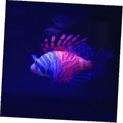 Best 25 fake fish tank ideas on pinterest coastal style for Fake artificial aquarium fish tank