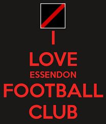 Image result for essendon football club