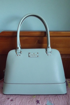 I just nabbed this cute Kate Spate Wellesley Rachelle bag in Jasper Blue off of ebay - can't wait to get it!