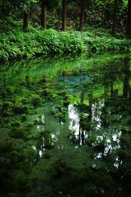 Shirakawa waterhead, Kumamoto, Japan