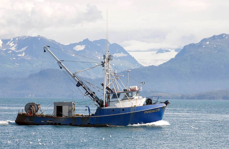 120 best images about fv on pinterest bristol crabs and for Alaska fishing boats