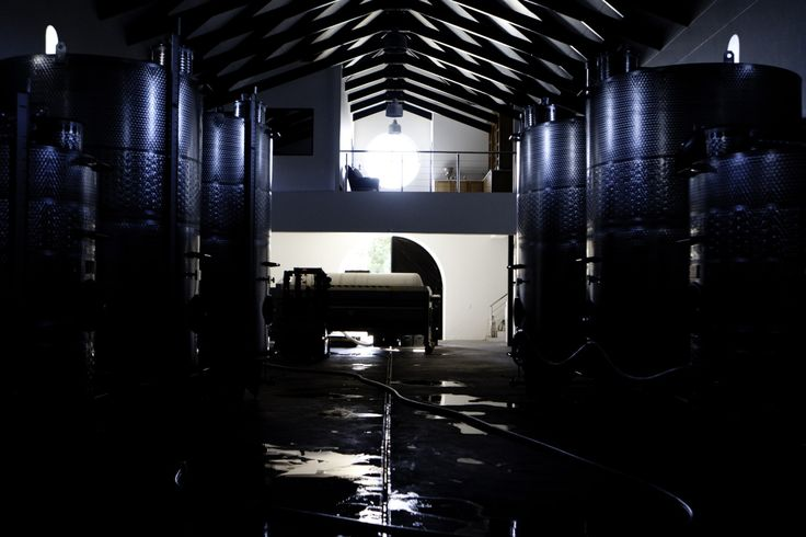 The cool interior of the cellar filled with stainless steel tanks