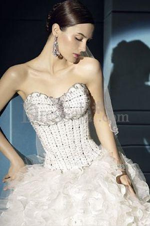 Fantasy Embroidery Corset Bodice Bridal Dress