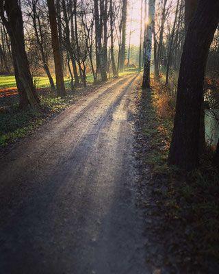 Leiper Wanderweg im Spreewald