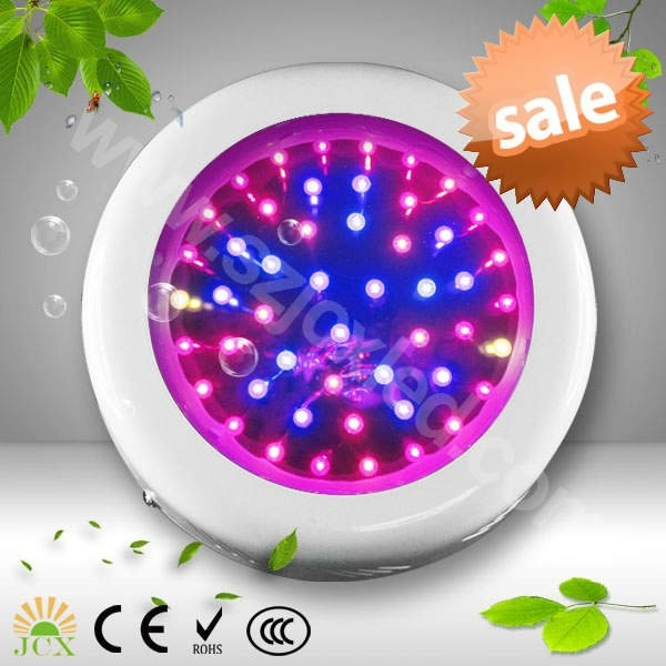 no problem these energy efficient grow lights make it easy to grow. Black Bedroom Furniture Sets. Home Design Ideas