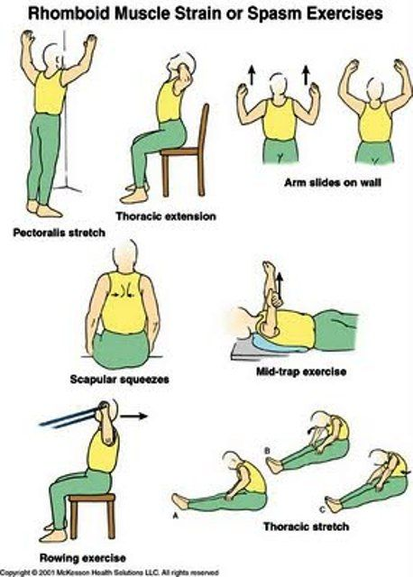 EXCLUSIVE PHYSIOTHERAPY GUIDE FOR PHYSIOTHERAPISTS: RHOMBOID MUSCLE STRAIN OR SPASM EXERCISES