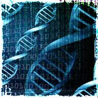 National DNA Database: Supreme Court Approves Police can Collect DNA from Innocent People