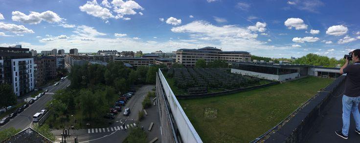 Vue de la ferme urbaine Peas&Love sur le toit de Caméléon.