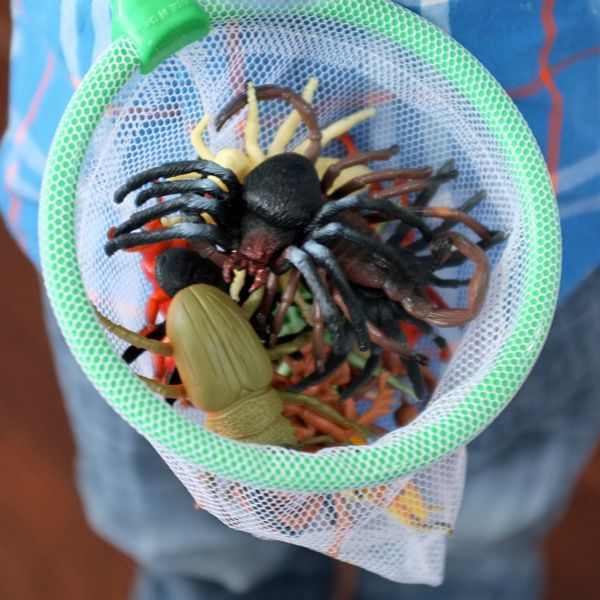 Bug Party - Kids go on bug hunt with bug catcher nets to find as many plastic bugs as they can.