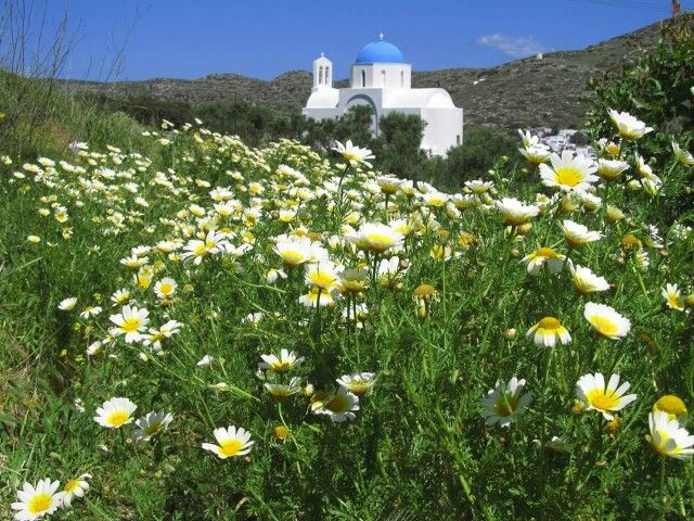 Amorgos Chapel in the Spring