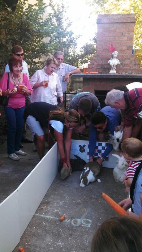 Rabbit racing @Gwenda Gravely Horse Lounge
