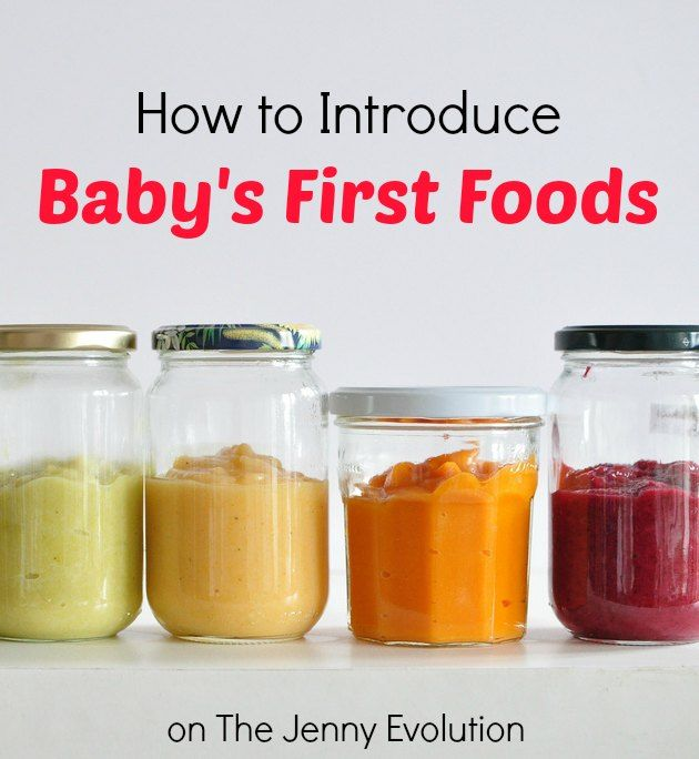 How to Introduce Baby's First Foods | The Jenny Evolution