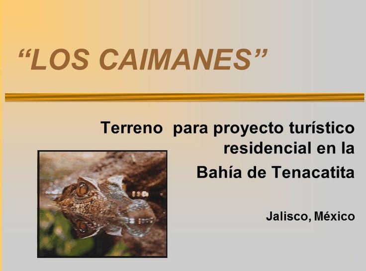 Terreno en venta para proyecto turístico residencial en la Bahía de Tenacatita