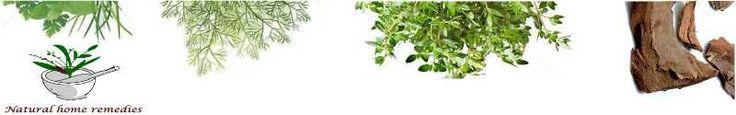 Terminalia chebula/Kadukkai health benefits and Terminalia chebula home remedies