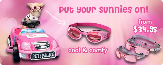 Put your sunnies on!