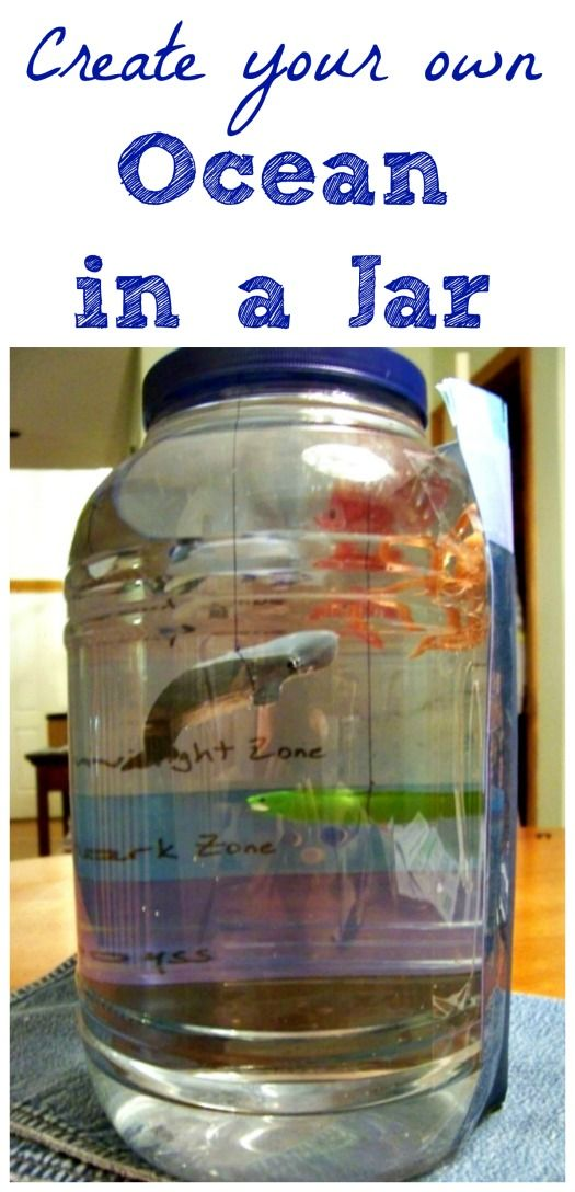 Awesome Ocean Craft! Learn the Zones of the Ocean with this great science craft for kids! STEM for kids