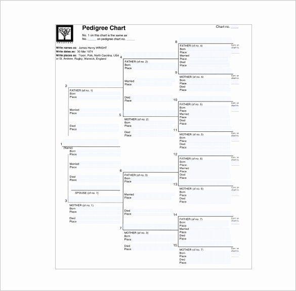 Free Pedigree Chart Template In 2020 Pedigree Chart Family Tree