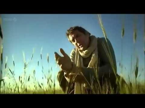 BBC Documentary; 10000 BC, Göbekli Tepe - YouTube