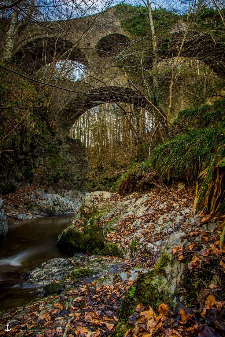 Craigmin Bridge | A view of the 18th Century built Craigmin Bridge at Drybridge near Buckie Moray Scotland