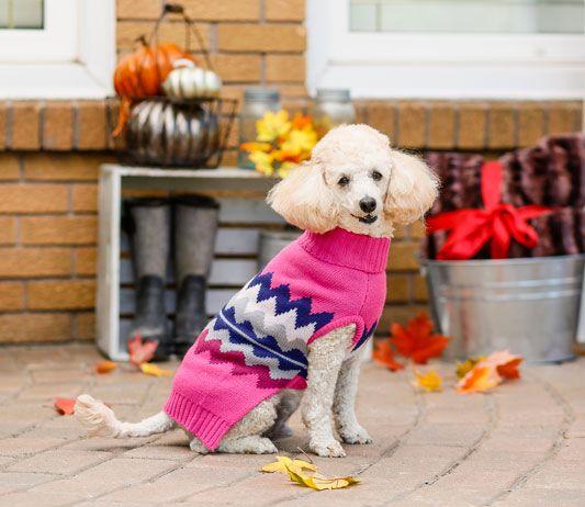 Bailey & Bella Wave Sweater