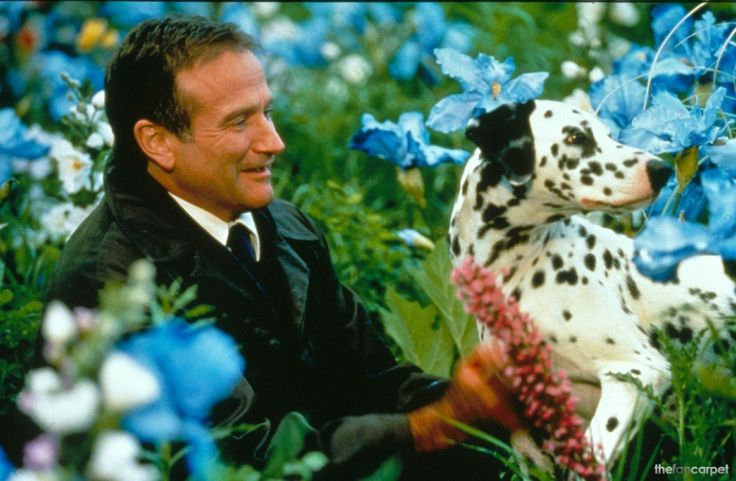 """Robin Williams """"Death is nature's way of saying, """"Your table is ready."""""""