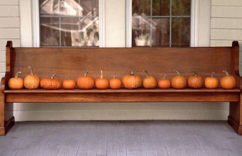 Beautiful old church pew lined with small pumpkins.