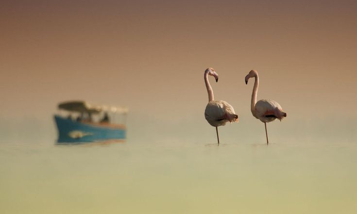 Μένεις στη Θεσσαλονίκη και θέλεις να ξεφύγεις για δυο μέρες; Τι θα έλεγες για μια απόδραση; Διάβασε το άρθρο και περιηγήσου...