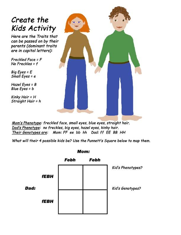 Genetics Activity Create The Kids Pbl Possibility Genetics Activities Fun Worksheets For Kids Dna Activities Genetics and heredity worksheet