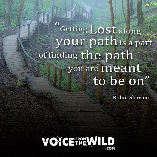 Getting Lost Along Your Path Is A Part Of Finding The Path You Are Meant To Be On Robin Sharma Guidance Quotes Believe Quotes Amazing Inspirational Quotes