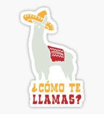 Image result for llama puns